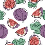Seamless hand draw pattern with fresh fig fruit. Seamless hand draw pattern with fresh fig fruit Royalty Free Stock Images