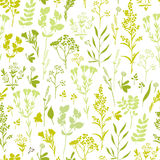 Seamless hand-drawn floral pattern with herbs Royalty Free Stock Photo