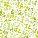 Seamless hand-drawn floral pattern with herbs Royalty Free Stock Images