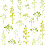 Seamless hand-drawn floral pattern with herbs Stock Photo