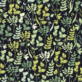 Seamless hand-drawn floral pattern with herbs Stock Images