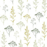 Seamless hand-drawn floral pattern with herbs Stock Photos
