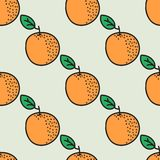 Seamless hand-drawn pattern with orange. Vector. Illustration. Doodle style Royalty Free Stock Photography