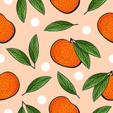 Seamless hand drawn tangerine pattern Royalty Free Stock Photography