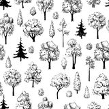 Seamless hand drawn tree sketches pattern. Stock Photos