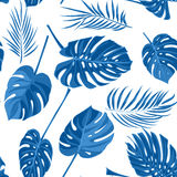 Seamless hand drawn tropical pattern with palm leaves in blue color, jungle exotic leaf on white background Stock Image
