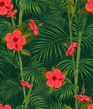 Seamless hand drawn tropical pattern with palm leaves, jungle exotic flower on dark background Royalty Free Stock Photos