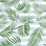 Seamless hand drawn tropical pattern with palm leaves, jungle exotic leaf on white background vector illustration