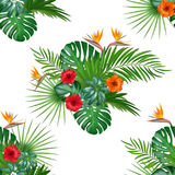 Seamless hand drawn tropical vector pattern with hibiscus flowers. Seamless hand drawn tropical vector pattern with hibiscus flowers and exotic palm leaves Stock Photo