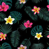 Seamless hand drawn tropical vector pattern with orchid flowers. And exotic palm leaves on dark background Stock Photos