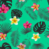 Seamless hand drawn tropical vector pattern with orchid flowers. And exotic palm leaves on dark background Royalty Free Stock Photos