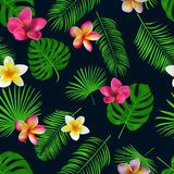 Seamless hand drawn tropical vector pattern with orchid flowers. And exotic palm leaves on dark background Royalty Free Stock Images