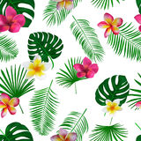 Seamless hand drawn tropical vector pattern with orchid flowers. And exotic palm leaves on white background Stock Photography