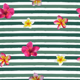 Seamless hand drawn tropical vector pattern with orchid flowers. On striped background Stock Photos