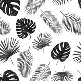 Seamless hand drawn  vector pattern with green palm leaves on wh Royalty Free Stock Photos