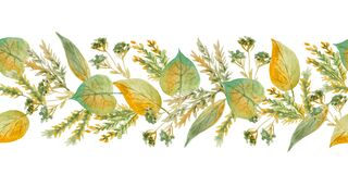 Seamless hand drawn watercolor horizontal border with green yellow wild herbs leaves in wood woodland forest. Organic