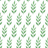 Seamless hand painted green herb pattern Royalty Free Stock Photos