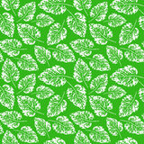 Seamless handcrafted pattern with leaves. White leaves imprints on green background. Vector seamless pattern Stock Photos