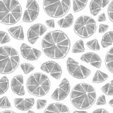Seamless handdrawn watercolor citrus pattern on white background royalty free illustration