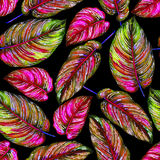 Seamless handmade floral pattern. Royalty Free Stock Images