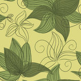 Seamless herbal pattern Stock Photography