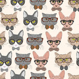 Seamless Hipster Cats Pattern Background Royalty Free Stock Images