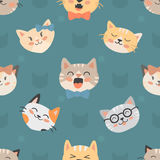 Seamless hipster cats pattern vector illustration Royalty Free Stock Image
