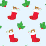 Seamless holly and Christmas stockings Royalty Free Stock Images