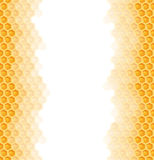 Seamless honey comb background Stock Photo