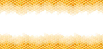 seamless honey comb background Stock Images