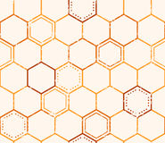 Seamless honey pattern with outlined honey cells Stock Images