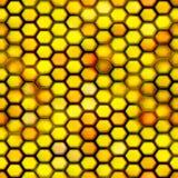 seamless honungskaka Royaltyfria Bilder