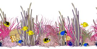 Seamless horizontal border with colorful tropical fishes, corals, sea weeds and sea anemones.