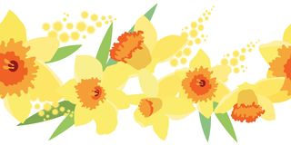 Seamless horizontal daffodil pattern Stock Image