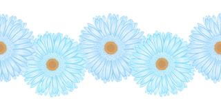 Seamless horizontal frame element of gerbera flower Royalty Free Stock Photography