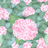 Seamless hydrangea flower pattern. Background Royalty Free Stock Photo