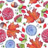 Seamless illustration with autumn flowers, leaves and berries on white background. Pattern hand drawn with colored pencils. Seamless illustration with autumn Stock Images
