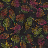 Seamless illustration with autumn leaves. Seamless pattern with autumn leaves painted against a dark background Stock Photo