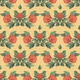 Seamless  illustration. chrysanthemums Royalty Free Stock Photo