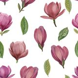 Seamless pattern of flowers and leaves of magnolia. stock illustration