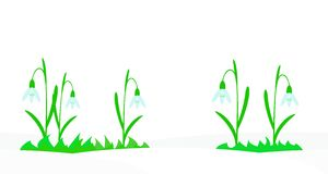 Seamless illustration with snowdrops. Stock Image