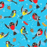 Seamless illustration with winter birds,winter background Stock Photos