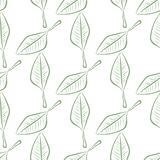 Seamless illustrations of leaves. Color, nature, pattern & surface. Seamless illustrations of leaves. Good for web page, wallpaper, graphic design, catalog royalty free illustration