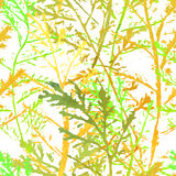 Seamless imprints pattern of the branched herbs. Grungy botanics stamp Royalty Free Stock Photos