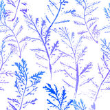 Seamless imprints pattern of the branched herbs. Grungy botanics stamp Royalty Free Stock Photo