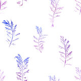 Seamless imprints pattern of the branched herbs. Royalty Free Stock Image