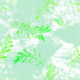 Seamless imprints pattern of the branched herbs. Stock Photo
