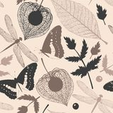 Seamless insects and leaves silhouettes Stock Photography