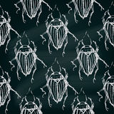 Seamless insects pattern. Decorative bugs background. Royalty Free Stock Photos