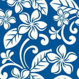 Seamless Island Plumeria Pattern Stock Photos